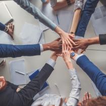 Certification: Build A Resilient Nonprofit Organizational Culture